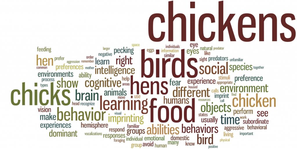 Wordle – Penn & Beyond