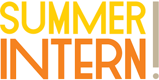 "Summer FUN – ""For Using Networking"""